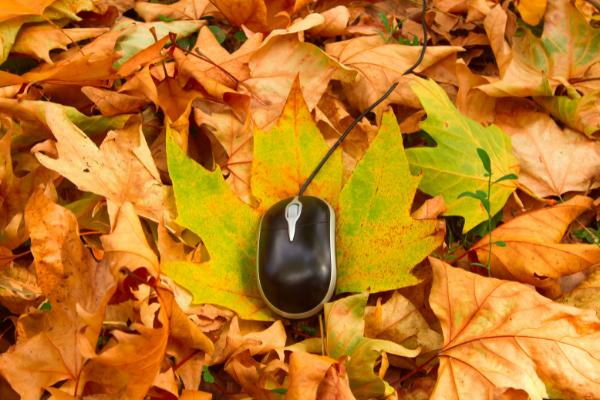 4 ideas para potenciar las compras de otoño en tu tienda online